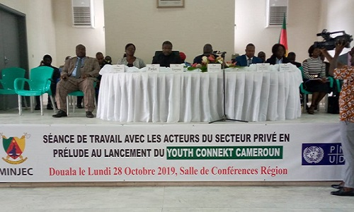 images/Minjec_YCC_seance_travail_douala.jpg